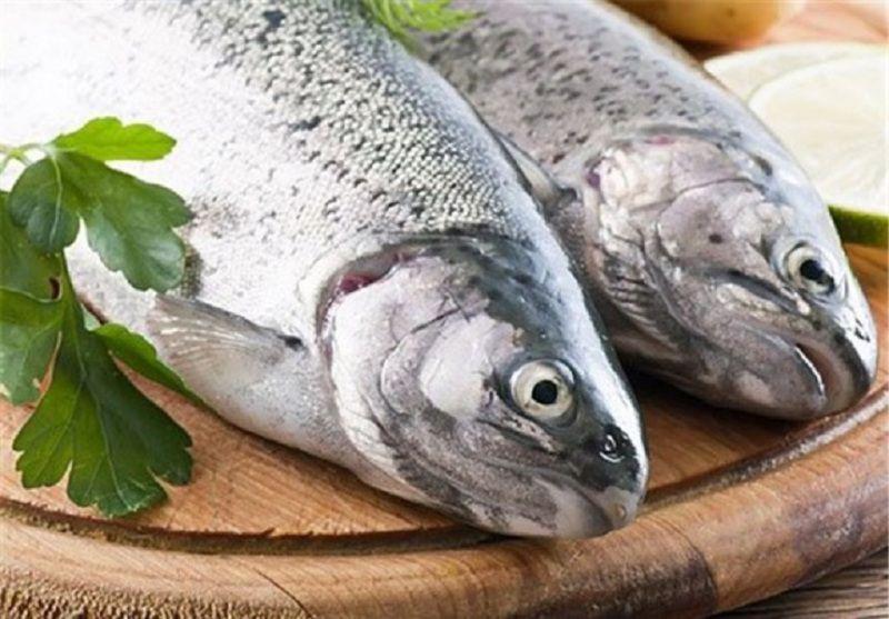 مدیرکل دفتر آبزیان شیلات ایران:  ذائقه؛ دلیل پایین بودن سرانه مصرف ماهی در ایران است